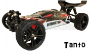 HIMOTO E10XBL 45mph 4x4 RC Brushless Buggy (Speed Demon)