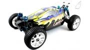 1/8 RC 4WD NITRO BLACKBIRD BUGGY