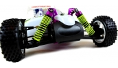 HSP Nitro Buggy 1/10 RTR 4WD (Thunder 2 Speed 60mph)